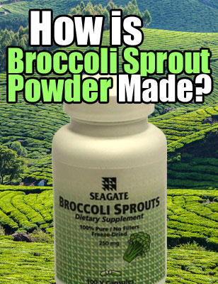 How is Broccoli Sprout Powder Made?